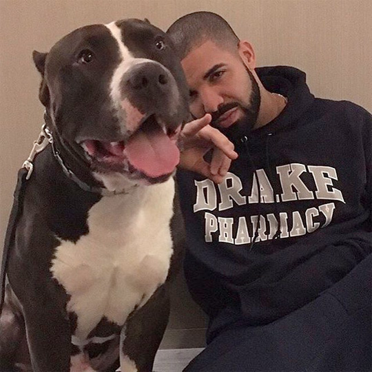 Drake One Dance Single Is Spotify Most Streamed Song Of All Time
